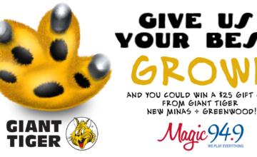 GT-Growl-Contest-2017